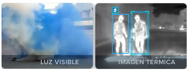 Luz visible e imagen térmica
